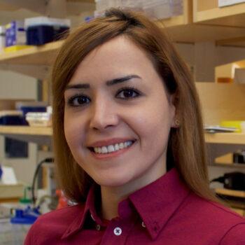 Elena Mahmoudi, PhD